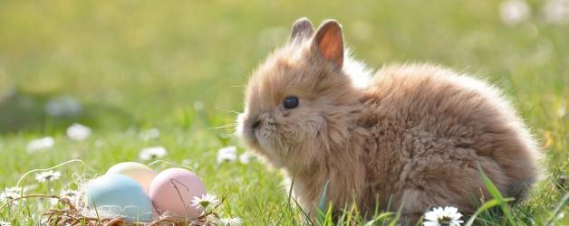 Ostern – und danach?
